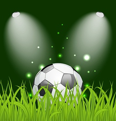 Soccer ball on green grass with light vector image vector image