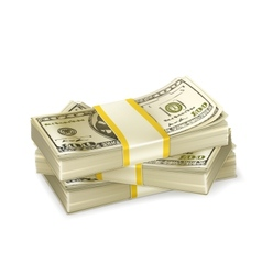 Stack of money vector image vector image