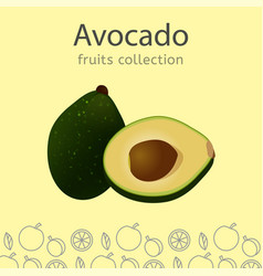 fruits collection image vector image