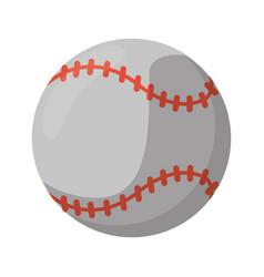 baseball ball sport game vector image