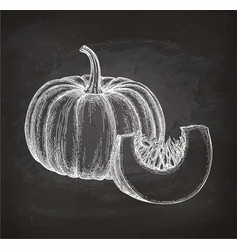 Chalk sketch of pumpkin vector