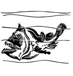 fish ogcocephalidae vector image vector image