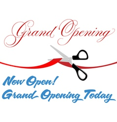 Grand Opening Background vector image vector image