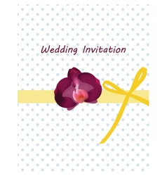 Invitation card with bow and ornaments vector image