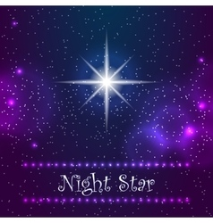 Night star on the sky vector image