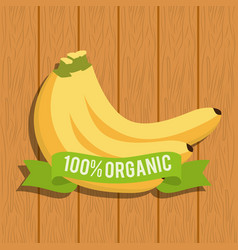 banana food organic over wooden vector image