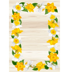 Daffodils frame vector