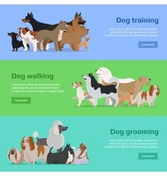 Dog training walking grooming banners set vector