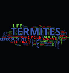 Life cycle of termites text background word cloud vector
