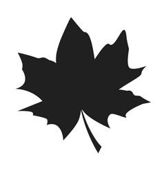 Maple leaf black silhouette autumn fallen object vector