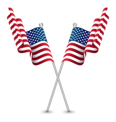 The usa waving flag vector