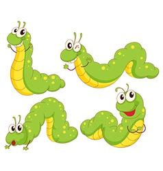 Four green caterpillars vector image