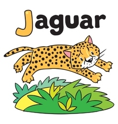 Little cheetah or jaguar for ABC Alphabet J vector image vector image