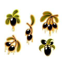 Black olives symbols set vector