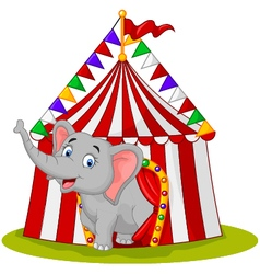 Happy elephant in the circus tent vector