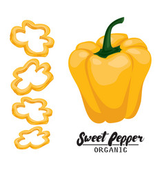 Cartoon sweet pepper ripe yellow vegetable vector