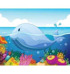 fish and coral in the sea vector image vector image