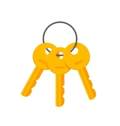 Keys on key ring isolated vector