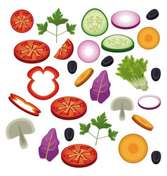 Salad vegetables food diet healthy vector