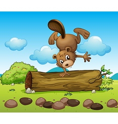 Cartoon beaver vector
