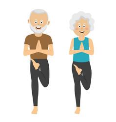 elderly people doing exercises vector image