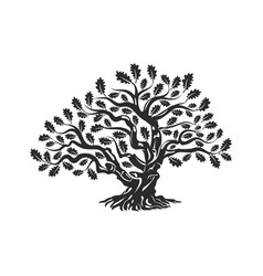 Huge and sacred oak tree silhouette logo badge vector