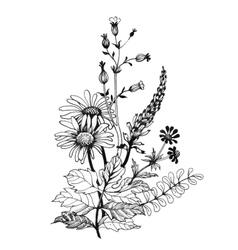 Vintage monochrome wildflowers watercolor vector