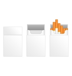 White packs of cigarettes vector image