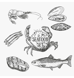 Creative seafood set Sketch vector image