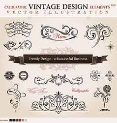 set classic Calligraphic design elements and book vector image
