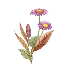 Watercolor blooming chamomile flowers vector