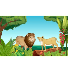 A tiger and a lion vector image