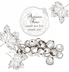 Autumn background with fruits and leaves vector