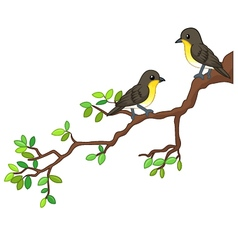 Two song birds on spring branch vector