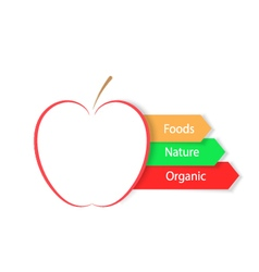 Red apple on a white background infographics food vector