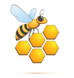 Bee on honeycells vector image