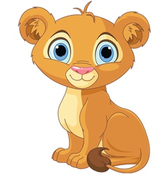 Lion king cub vector image