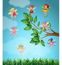 Fairies flying in the sky vector image