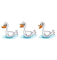 Smiling ducks vector