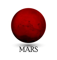 Planet mars isolated white background vector