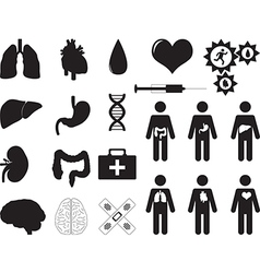Human organs and medical tools vector image vector image