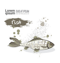 fish hand drawn watercolor food on white vector image vector image
