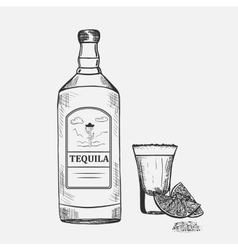 Hand drawn composition with tequila vector