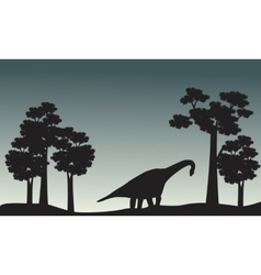 Scenery of brachiosaurus and tree silhouette vector image