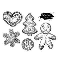 Gingerbread christmas cookies decorated with icing vector