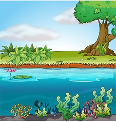 Land and aquatic environment vector