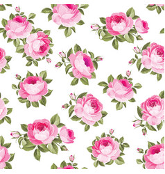 luxurious rose wallapaper vector image