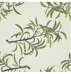 Seamless texture willow branch with catkins vector