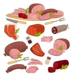 Set of different kinds meat vector