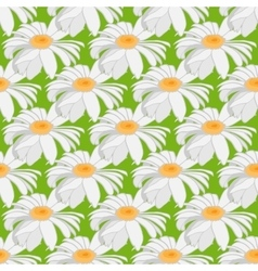 Seamless background of camomile large flowers on vector